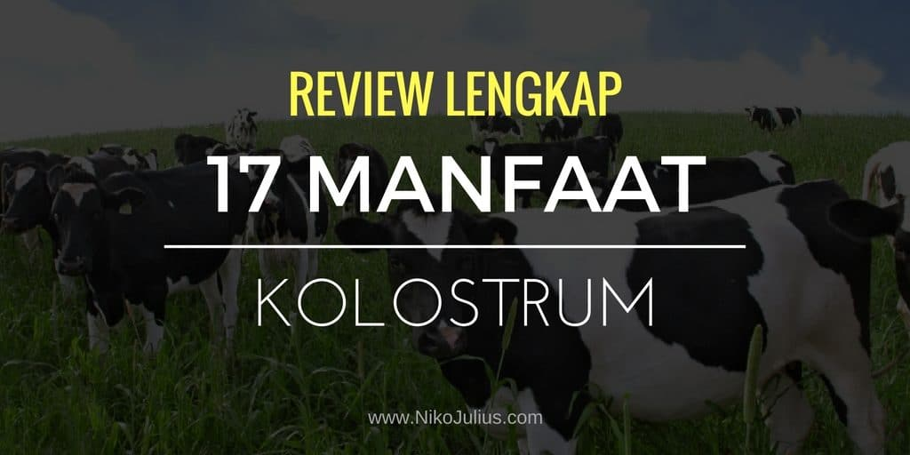 17 Manfaat Kolostrum