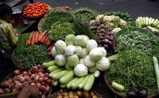 cara berbisnis sayuran