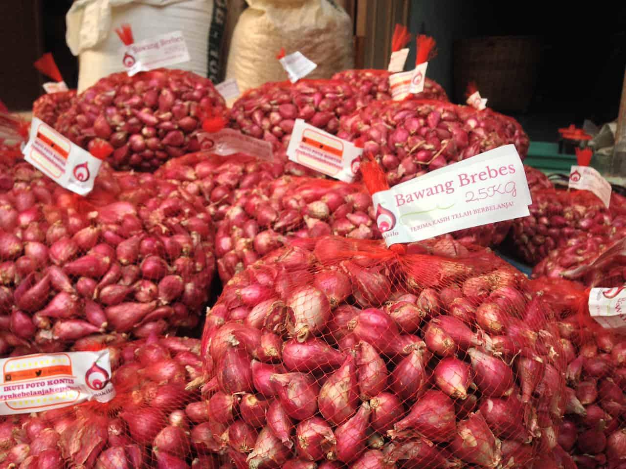 cara bisnis bawang merah